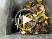 香蕉树脱水视频